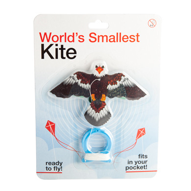 Eagle Kite – Worlds Smallest Kite