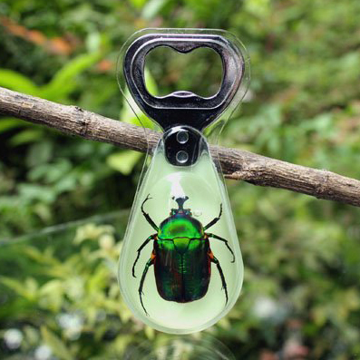Green Beetle Bottle Opener